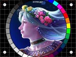 Прикрепленное изображение: diypro1.jpg
